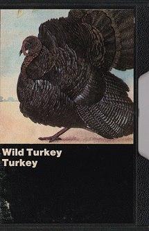 https://www.mindtosoundmusic.com/cassette-tapes/cassette-tapes-mega-rarities/wild-turkey-turkey.html